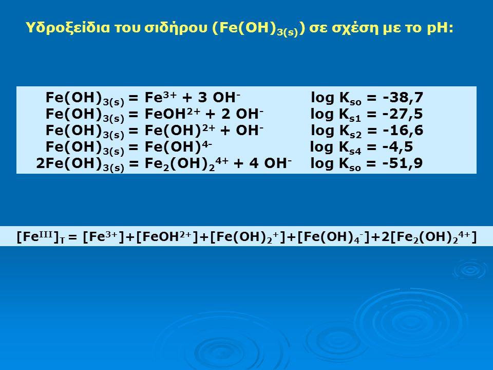 [FeIII]T = [Fe3+]+[FeOH2+]+[Fe(OH)2+]+[Fe(OH)4-]+2[Fe2(OH)24+]